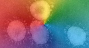 Photograph of virus with rainbow overlay